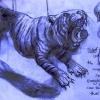 Robert wilson skizze mit Tigerweb